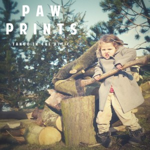 Tange In The Attic - Paw Prints - Covert Art Photography